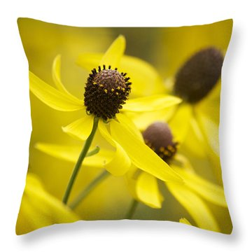 Sunshine On A Cloudy Day Throw Pillow by Penny Meyers