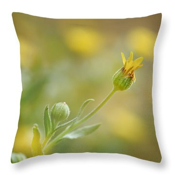 Surrounded Throw Pillow by Guido Montanes Castillo
