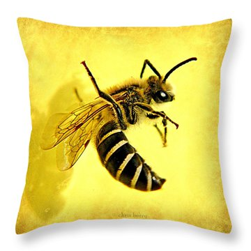 Suspended Animation  Throw Pillow by Chris Berry