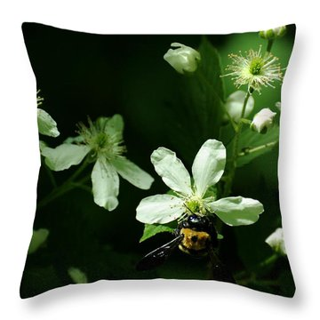 Swamp Rose With Carpenter Bee Throw Pillow by Rebecca Sherman