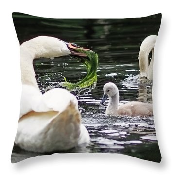 Swan Family Meal Throw Pillow by Rona Black