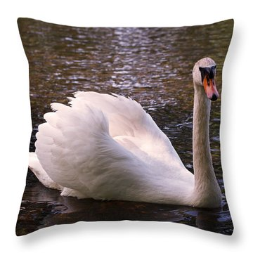 Swan Pose Throw Pillow by Rona Black