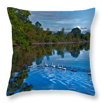 Swanny River Throw Pillow by Karol Livote