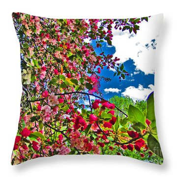 Sweet Escape Throw Pillow by Minding My  Visions by Adri and Ray