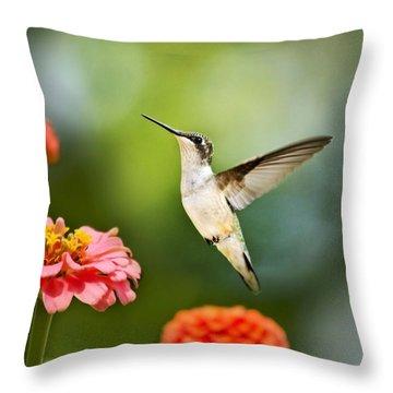 Sweet Promise Hummingbird Throw Pillow by Christina Rollo