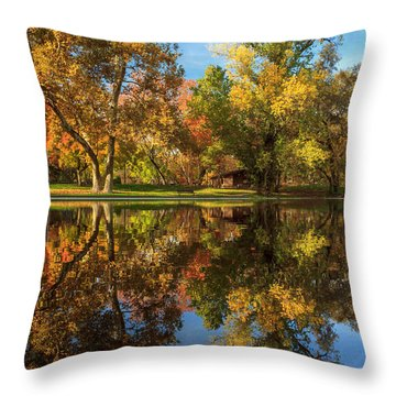 Sycamore Pool Reflections Throw Pillow by James Eddy