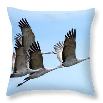 Synchronized Throw Pillow by Mike Dawson
