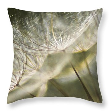 Take Me With You When You Go Throw Pillow by Jan Bickerton