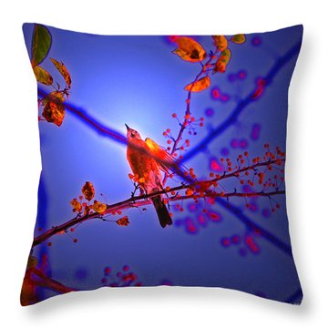 Taking Flight By Jrr Throw Pillow by First Star Art