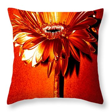 Tequila Sunrise Zinnia Throw Pillow by Sherry Allen