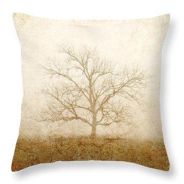 Test Of Time Throw Pillow by Scott Pellegrin