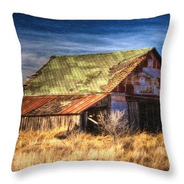 Texas Barn 1 Throw Pillow by DS Dodd