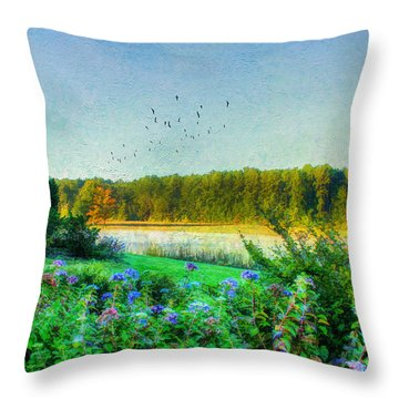 That Early Morning Light Throw Pillow by Darren Fisher