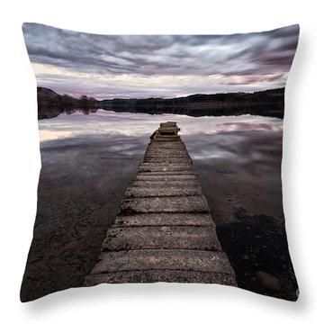 The Aproach Of Night Throw Pillow by John Farnan