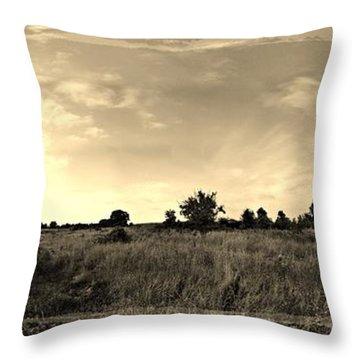 The Back Pasture Throw Pillow by Garren Zanker