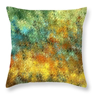The Beach Throw Pillow by David K Small