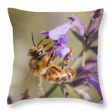The Bee's Knees Throw Pillow by Caitlyn  Grasso