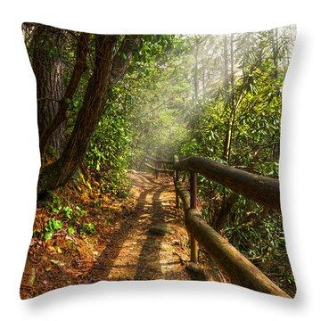 The Benton Trail Throw Pillow by Debra and Dave Vanderlaan