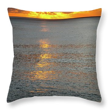 The Black Sea In A Swath Of Gold Throw Pillow by Phyllis Kaltenbach
