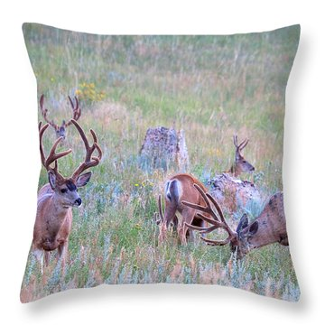 The Boys In The Band Throw Pillow by Jim Garrison