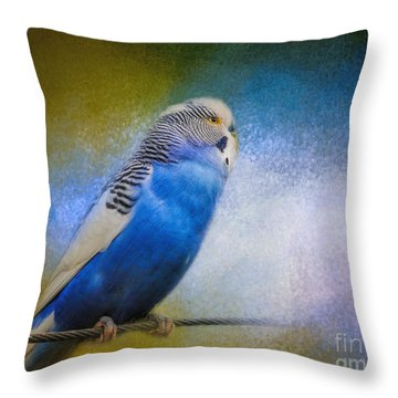The Budgie Collection - Budgie 2 Throw Pillow by Jai Johnson