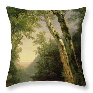 The Catskills Throw Pillow by Asher Brown Durand