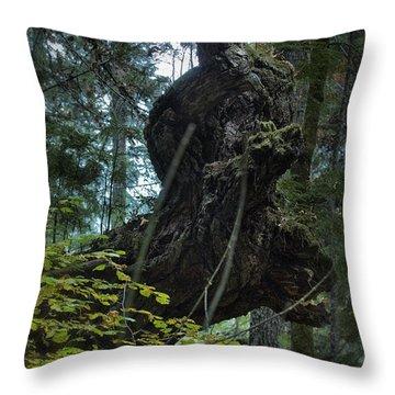 The Centaur Throw Pillow by Belinda Greb
