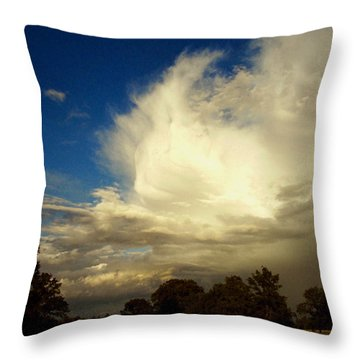 The Cloud - Horizontal Throw Pillow by Joyce Dickens