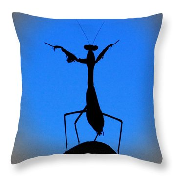The Conductor Throw Pillow by Patrick Witz