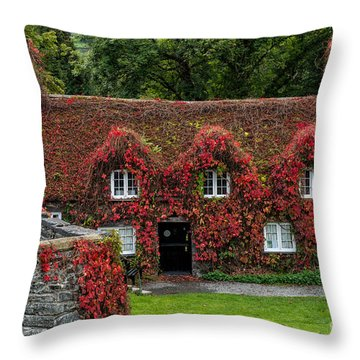 The Cottage Throw Pillow by Adrian Evans