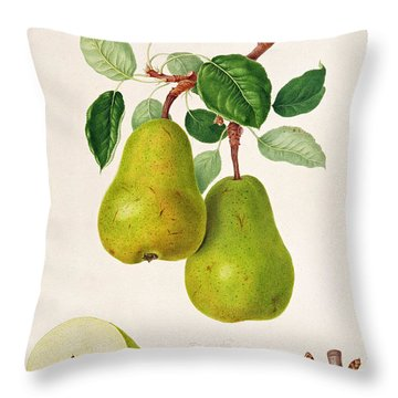 The D'auch Pear Throw Pillow by William Hooker