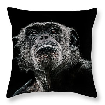 The Dictator Throw Pillow by Paul Neville