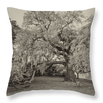 The Dueling Oak - A Place For Dying Bw Throw Pillow by Steve Harrington