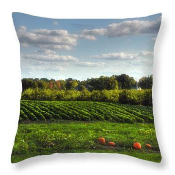 The Farm Throw Pillow by Joann Vitali