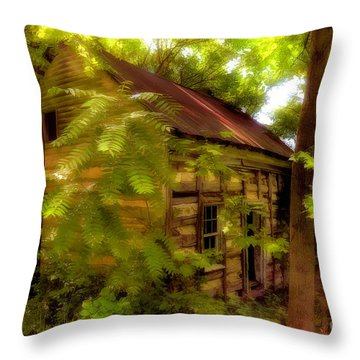 The Fixer-upper Throw Pillow by Lois Bryan