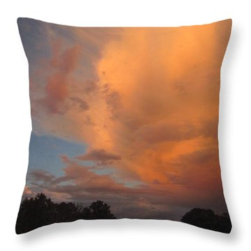 The Fury And The Beauty Throw Pillow by Joyce Dickens