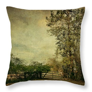The Gate Throw Pillow by Joan McCool