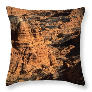 The Gobi Throw Pillow by Anonymous