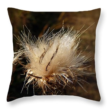 The Golden Present Throw Pillow by Lucinda Walter
