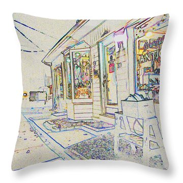 The Grateful Shed - Antique Store Throw Pillow by Susan Carella