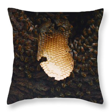 The Hive  Throw Pillow by Shawn Marlow