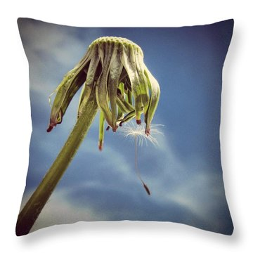 The Last Wish Throw Pillow by Marianna Mills