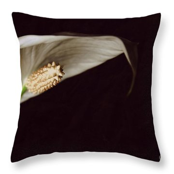 The Leaf Throw Pillow by Hannes Cmarits