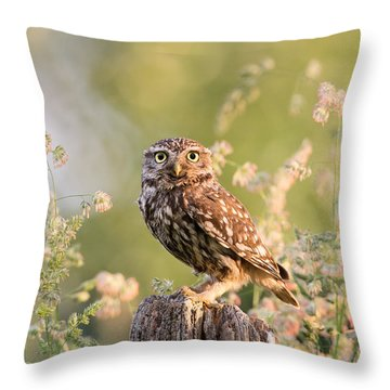The Little Owl Throw Pillow by Roeselien Raimond