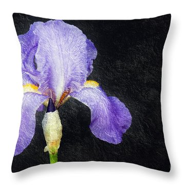The Lone Iris Throw Pillow by Andee Design