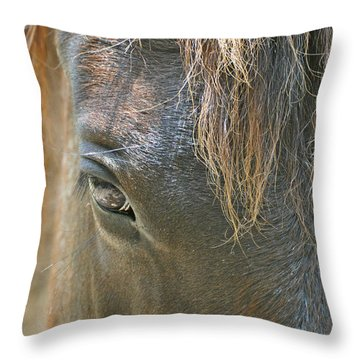 The Mane Eye Throw Pillow by Bruce Gourley
