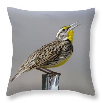 The Meadowlark Sings  Throw Pillow by Jeff Swan