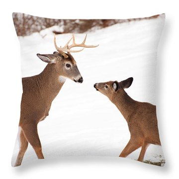 The Meet Throw Pillow by Karol Livote