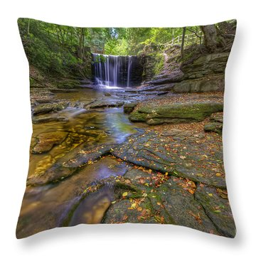 The New Fall  Throw Pillow by Darren Wilkes