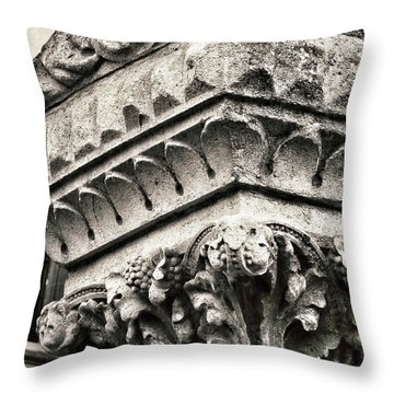 Elemental Throw Pillow by Connie Handscomb